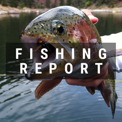 fishing_report_nav_button