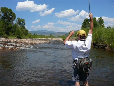 Provo river fly fishing guides provo river weber river for Best fishing in utah