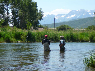 Provo river fly fishing guides provo river weber river for Weber river fishing report