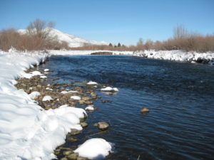Middle provo river fishing reports fly fishing for Provo river fishing report