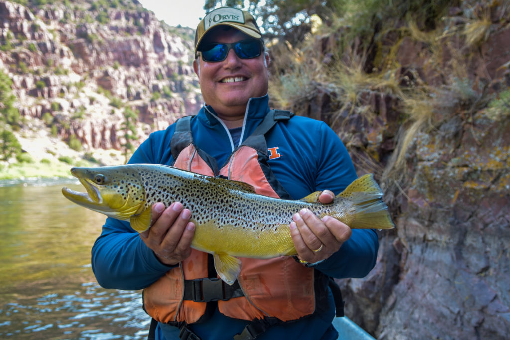 Utah fly fishing report current river conditions hatches for Utah fishing report